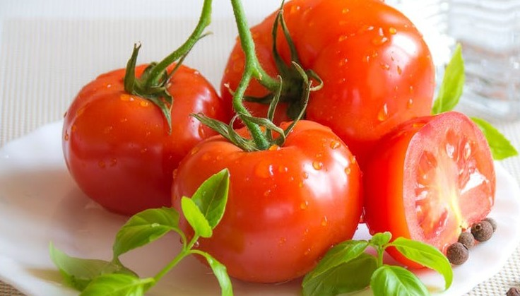 fresh and watery appetizing tomato on hot summer